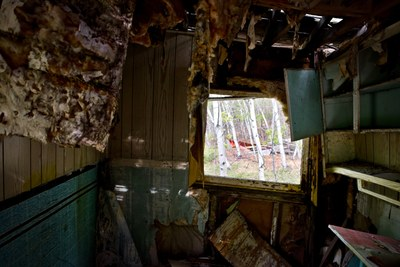 View into a broken house. Through the window birch trees are visible. The ceiling is hanging down in flaps